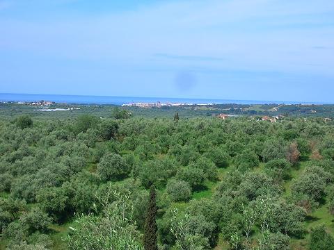 20 Blick auf den Golfplatz Navarino