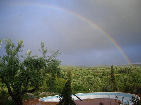 40 rainbow of fortune over the pool